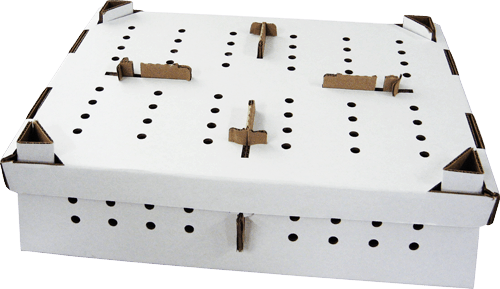 game bird shipping boxes